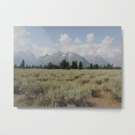 The Rockies are living, they never will die! Metal Print