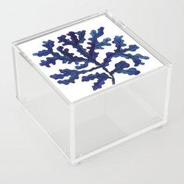 Sea life collection part I Acrylic Box
