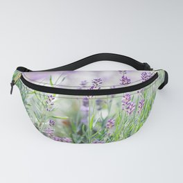 Lavender in summer garden Fanny Pack