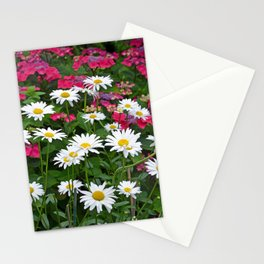 Spring daisy beauties Stationery Cards