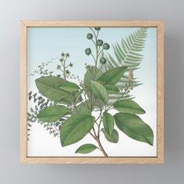 Botanical Leaves and Ferns Digital Collage of Vintage Elements Framed Mini Art Print