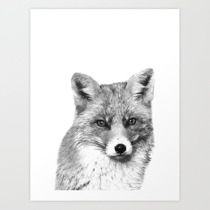 Black and White Fox Art Print
