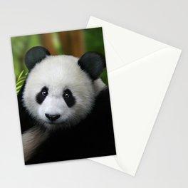 Giant Panda Cub Stationery Cards