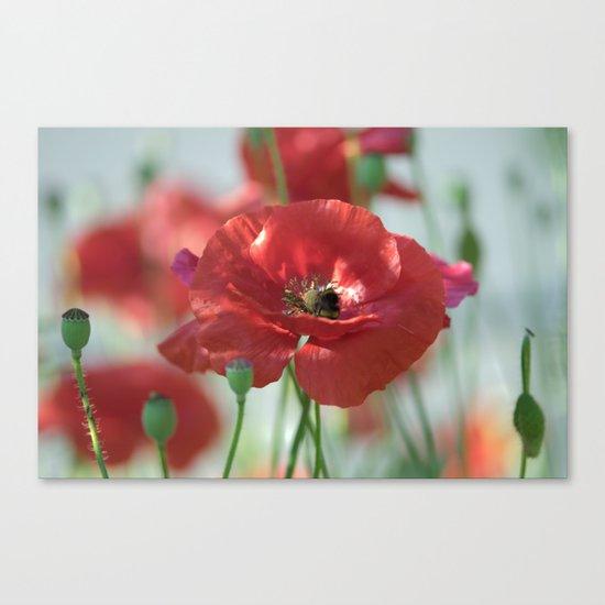 Red poppy Art Canvas Print