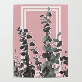 Eucalyptus Portrait Poster