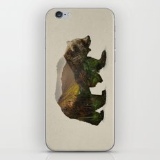 North American Brown Bear iPhone & iPod Skin