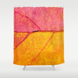 Nature Abstract: Cells and Veins of a Colorful Close up Autumn Leaf Shower Curtain
