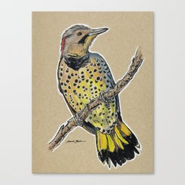State Bird Series: Alabama - Yellowhammer Canvas Print