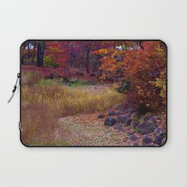 Fall Foliage in Nikko, Japan Laptop Sleeve