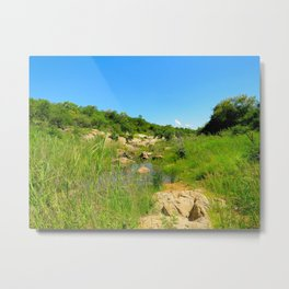 """""""A Walk on the Wild Side (x)"""" by ICA PAVON Metal Print"""