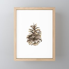 Pine cone. Framed Mini Art Print