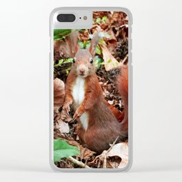 Do you have nuts for me? Clear iPhone Case