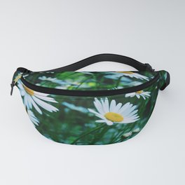 Daisies in bloom Fanny Pack