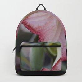 Longwood Gardens - Spring Series 113 Backpack
