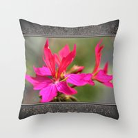 grafitti Throw Pillows featuring Zonal Stellar Geranium named Grafitti Violet by JMcCombie