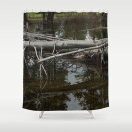 Mirror Pond Shower Curtain