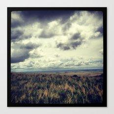 Fields - Badlands, South Dakota  Canvas Print