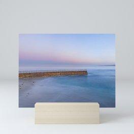 Early Morning Panorama of Children's Pool, La Jolla, San Diego, California Mini Art Print