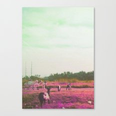 Oh these city kids Canvas Print