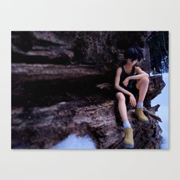 Lone Soldier Canvas Print