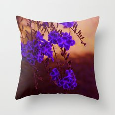 Chase away the blues Throw Pillow