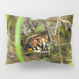 Box Turtle and Tadpoles Pillow Sham