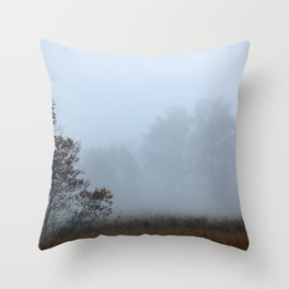 Misty Morning in Cades Cove, Great Smoky Mountain National Park Throw Pillow