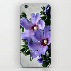Hibiskus iPhone & iPod Skin