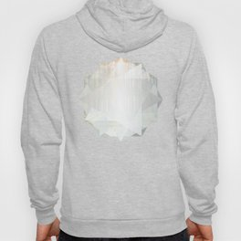 Poly Forest Hoody