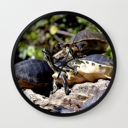 Watercolor Turtle, Eastern Painted Turtle 08, Merchants Millpond, North Carolina, Short Stack Wall Clock