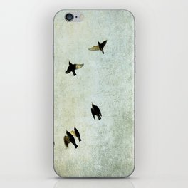 Birds Let's fly iPhone Skin