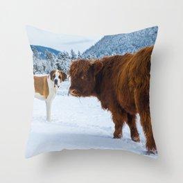 St bernard VS a Hairy cow Throw Pillow