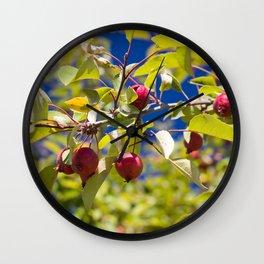 Crabapple Branch Wall Clock