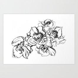 Flowers Line Drawing Art Print