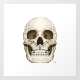 Digital Skull Painting Art Print