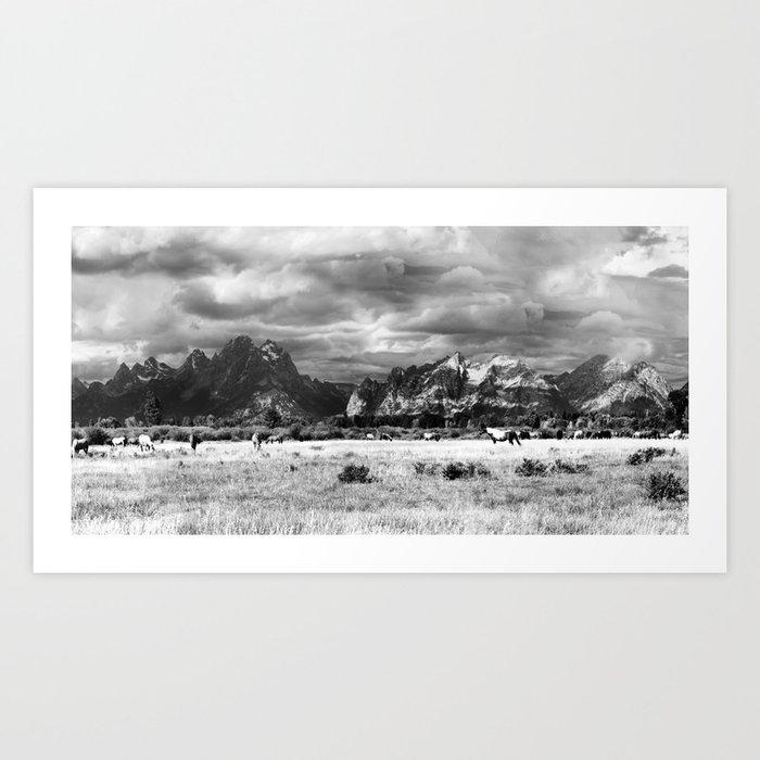 Horse and Grand Teton (Black and White) Kunstdrucke