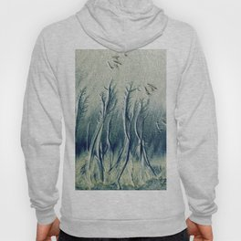 The Cypress Forest Hoody