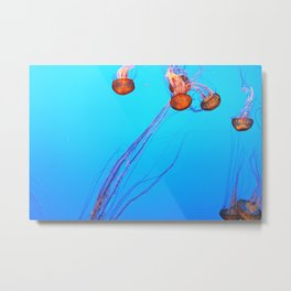 I Shall Call Him Squishy 5 Metal Print