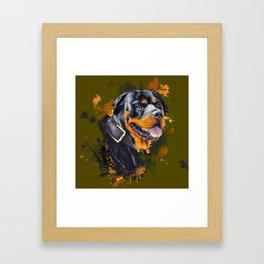 Rottweiler Framed Art Print