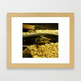 Tiny Turtle Framed Art Print