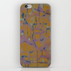 Pastel Map iPhone & iPod Skin