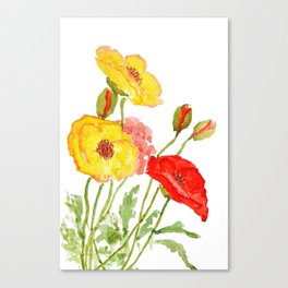 red and yellow  poppies Canvas Print