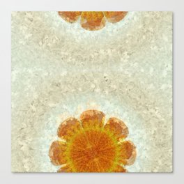 Epexegetic Pie In The Sky Flower  ID:16165-011115-17420 Canvas Print