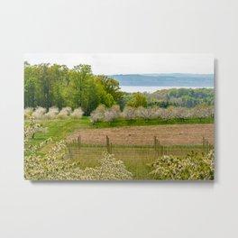 Orchard View Metal Print