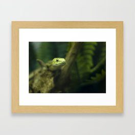 In your face! Framed Art Print