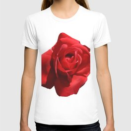 Red Rose Isolated T-shirt