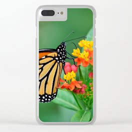 Monarch's Busy Day Clear iPhone Case