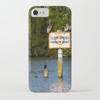 manatee iPhone & iPod Cases featuring Manatee Zone by Roger Wedegis