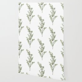 Baby Blue Eucalyptus Watercolor Painting Wallpaper