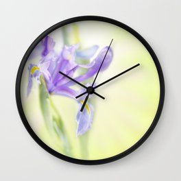 Flag iris in spring sunlight on a bright sunburst Wall Clock